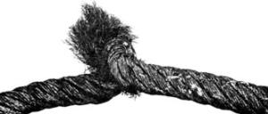 Крупный узел